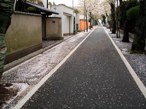20070412-01.jpg