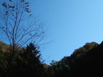 20071029-03.jpg